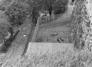Nel 1977 c'erano ancora gli animali nello zoo del castello
