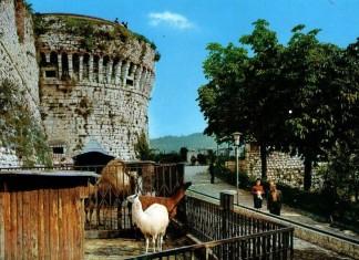 Castello Giardino Zoologico edizioni Micheletti