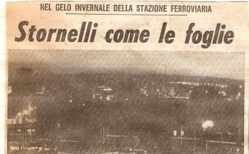 """""""Stornelli come le foglie"""", articolo del Giornale di Brescia del Gennaio 1979. (Documento inviato da Antonio Cravarezza)"""