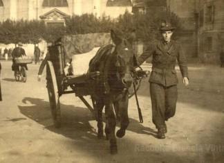 """""""Mio papà Noè in via San Faustino in tenuta da militare con mulo e carretto"""", 29-11-1944."""