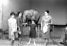 Gita domenicale allo zoo del Castello con mamma e zia, Brescia anni '60