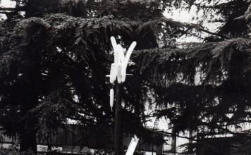 Il palo della Cuccagna