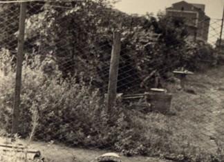 Giocando in via Dalmazia nel 1952 - Brescia