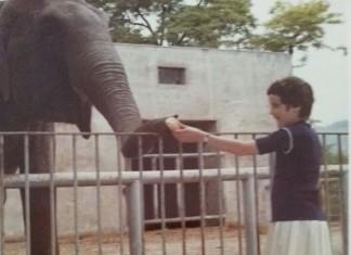 Titolo: Amico elefante.... Fonte: Archivio personale Dal Min Anno: 1970