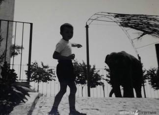 quando a Brescia c'erano gli elefanti