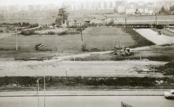 Brescia 2 anni 70