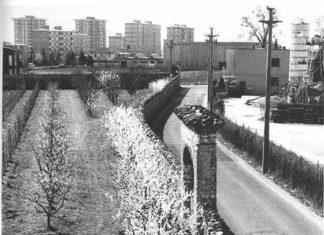 La poesia della campagna sopravvissuta alla città.